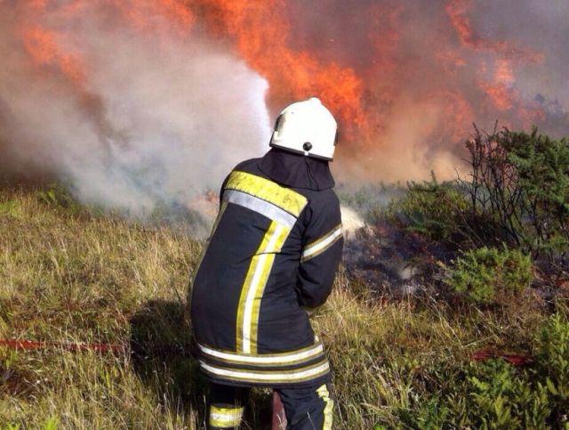 Incendios forestales en Puerto Montt